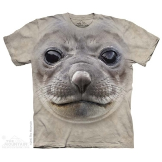 Big Face Seal
