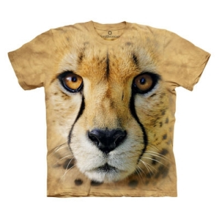 Big Face Cheetah OL